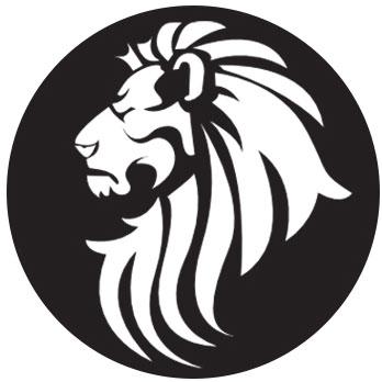 LIONSGATE SOLUTIONS SL